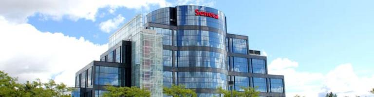 Seneca College Salesforce Offer Certificate Program It World Canada News