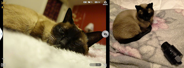 Sony's DSC QX100 sits opposite a feline model, right. At left is what a user gets once it links to a smartphone