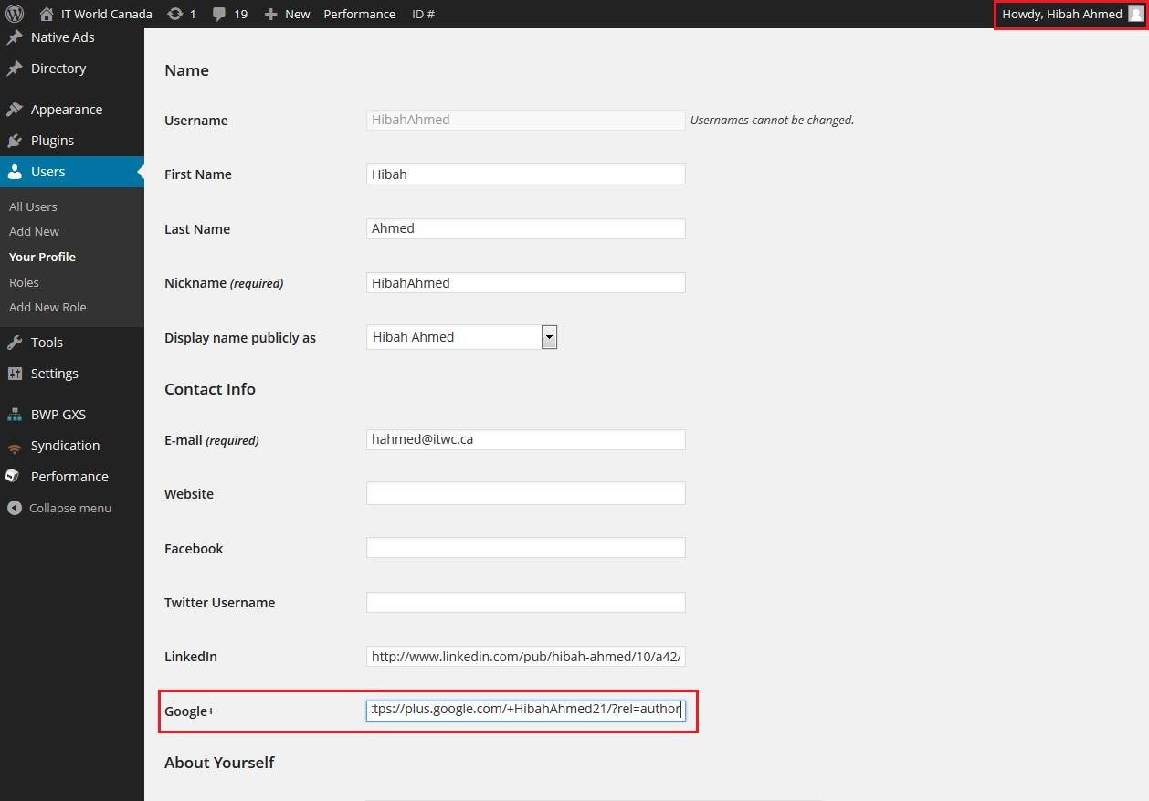 Screenshot of WordPress with googleplus link