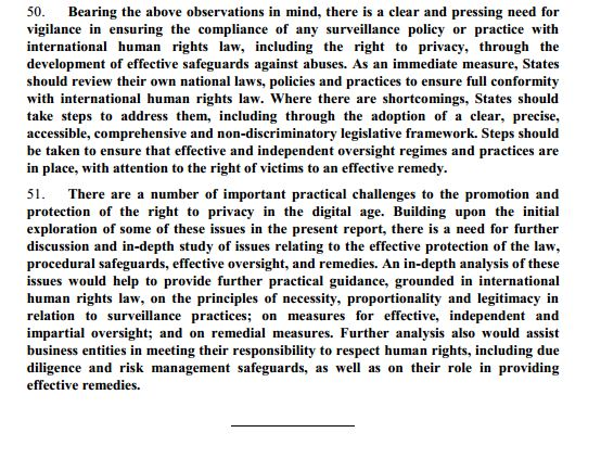 in story excerpt of UN report on government oline surveillance
