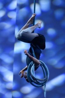 in stiory cirque du soleil acrobat