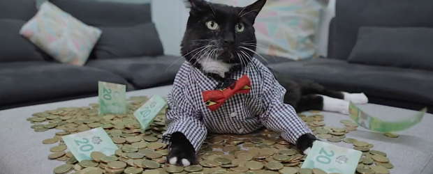Hardbacon money cat