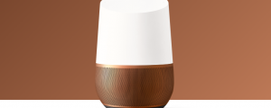 Google Home - brown feature