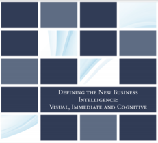 Defining the New Business Intelligence: Visual, Immediate and Cognitive