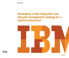 Developing a data integration and lifecycle management strategy for a hybrid environment