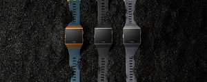 Fitbit Ionic family