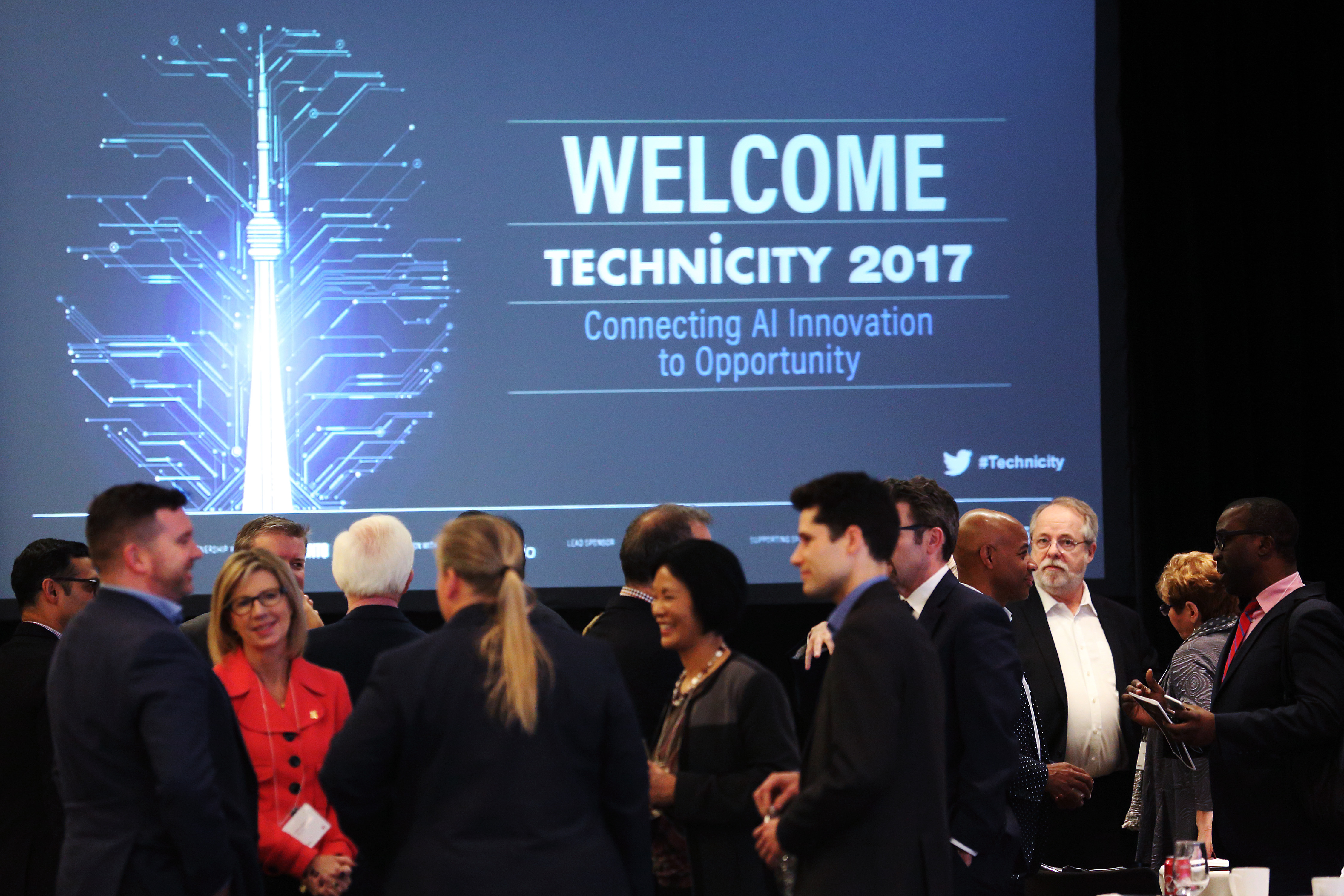 Technicity 2017 - crowd