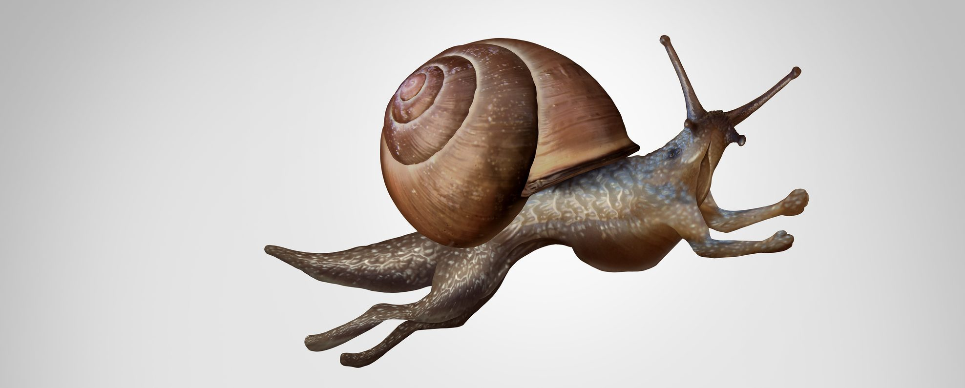 Concept Of Change - flying snail