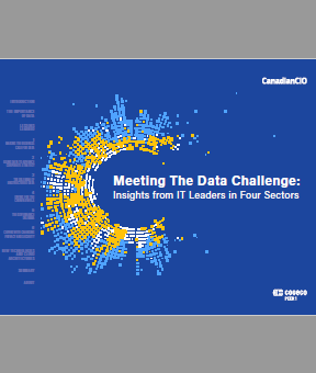 Meeting The Data Challenge: Insights from IT Leaders in Four Sectors