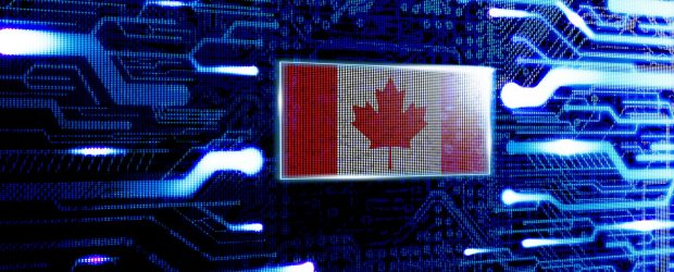 Bell petition to cabinet: cheaper wholesale internet 'yield