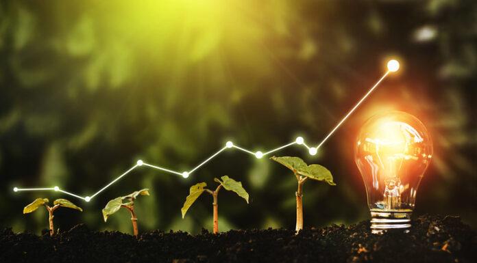 Startup growth concept art