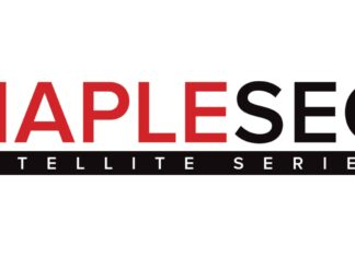 Maplesec's main logo