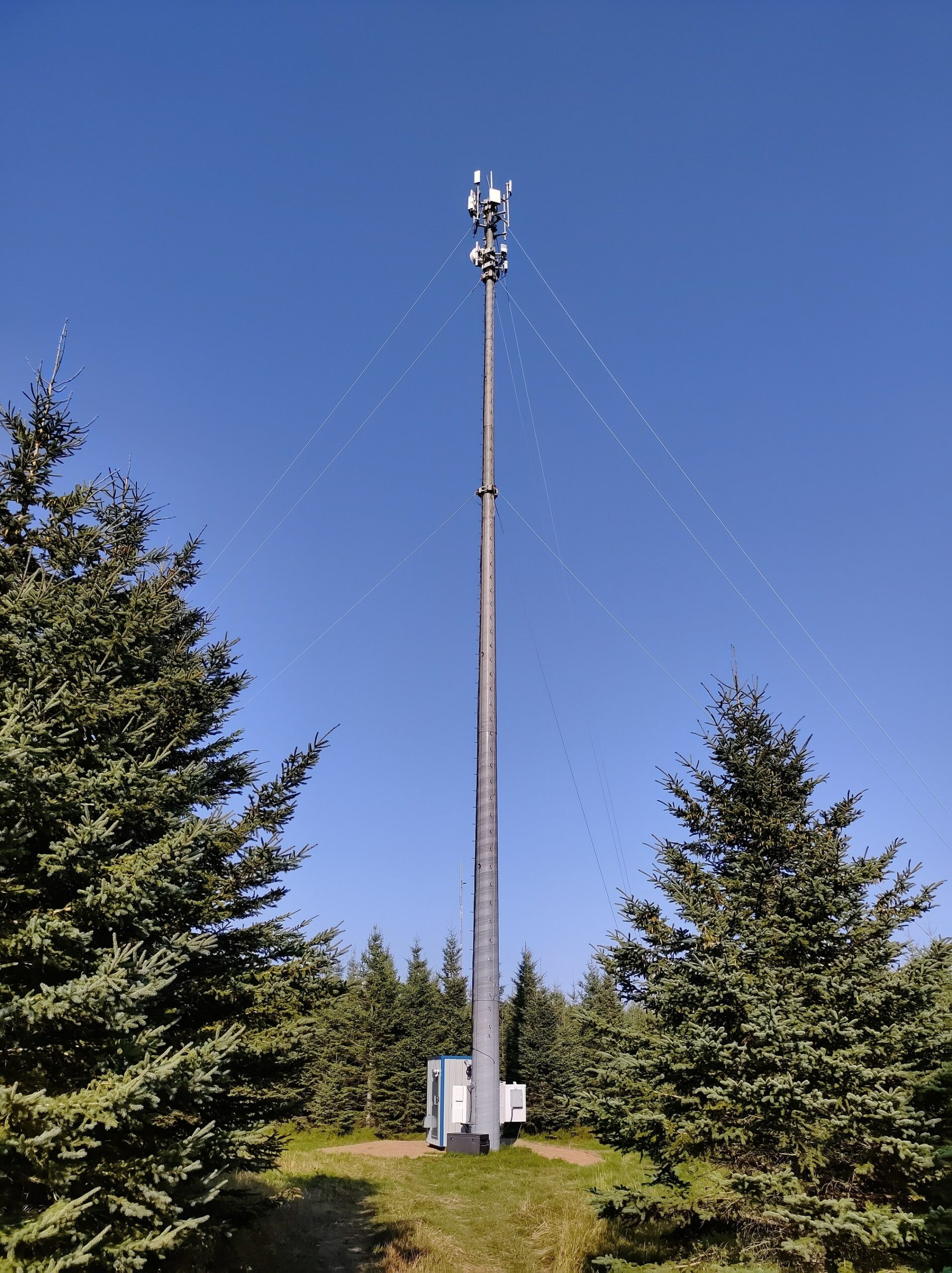 An Xplornet 5G mast standing in a clearning.